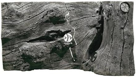 Back To Nature Orinoco Juwel (03000033) - Tło strukturalne z motywami drewna do akwarium Juwel.
