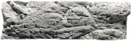 Back To Nature Malawi White (03000039) - Tło strukturalne z motywami skalnymi do akwarium 150x50cm