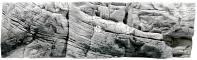 Back To Nature Tanganyika White (03000046) - Tło strukturalne z motywami skalnymi do akwarium 150x50cm