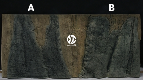Back To Nature Slim Line Amazonas (03000101) - Płaskie tło modułowe z motywem korzenia i skał do akwarium i terrarium