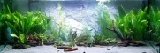 Back To Nature Slim Line River (03000110) - Płaskie tło modułowe z motywem skalnym do akwarium i terrarium