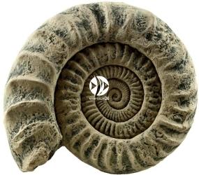 Back To Nature Aquarium Modul Ammonit (03000049) - Ozdoba imitująca skamielinę do akwarium lub terrarium