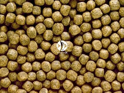 HIKARI Staple (01242) - Pływający pokarm dla wszystkich ryb stawowych