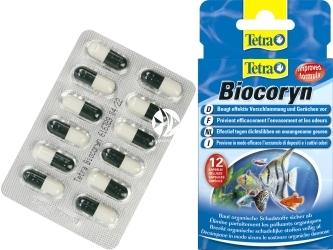 TETRA Biocoryn 12 Kaps. (T146860) - Preparat bakteryjny w kapsułkach do usuwania szlamu z akwarium.