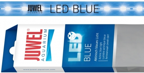 JUWEL Blue LED (86884) - Świetlówka LED do belek oświetleniowych MultiLux LED, dająca aktyniczne niebieskie światło