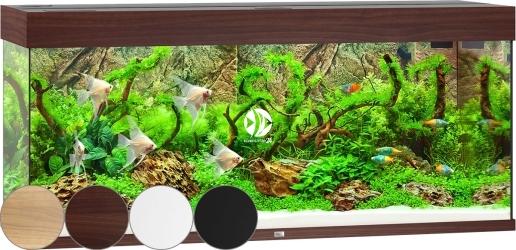 JUWEL Rio 240 HeliaLux Spectrum (3350HLS) - Akwarium z pełnym wyposażeniem bez szafki, 4 kolory do wyboru