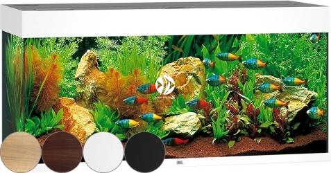 JUWEL Rio 180 HeliaLux Spectrum - Akwarium z pełnym wyposażeniem bez szafki, 4 kolory do wyboru