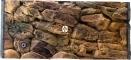 EKOL Tło Skała (SK50x30) - Tło do akwarium z motywem skał, imitujące biotopy bez roślin jak Malawi, Tanganika 100x40 cm