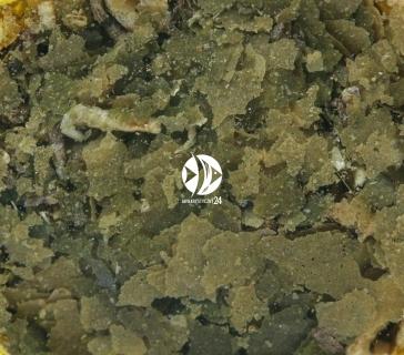 SERA GVG-Mix Nature 100ml (32250) - Smakowity pokarm dla ryb akwariowych z jodem