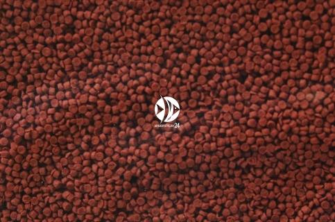 SERA Granured (00402) - Wysokobiałkowy pokarm dla pielęgnic mięsożernych