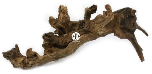 Korzeń Dark Old Wood 1szt XL 50-60cm - Stary, ciemny korzeń do akwarium roślinnego
