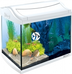 TETRA AquaArt LED Shrimp 20L Biały (T244863) - Zestaw nano akwarium, krewetkarium o pojemności 20l.