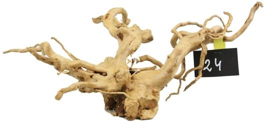 ROTALA Premium Red Moor Wood nr 24 (szt) - Dekoracyjny korzeń do akwarium roślinnego