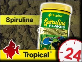 TROPICAL SPIRULINA FLAKES 185g/1L - Roślinny pokarm płatkowany z dodatkiem glonów Spirulina platensis