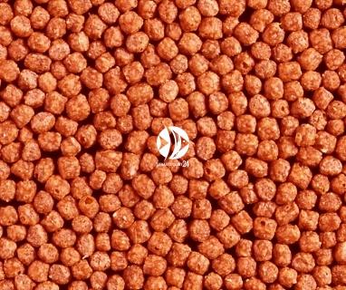 HIKARI Wheat-germ Floating (06242) - Pływający pokarm dla ryb stawowych w zimnej wodzie