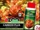 AZOO CARBON PLUS (AZ11048) - Węgiel w płynie, 6 razy bardziej skoncentrowany 120ml