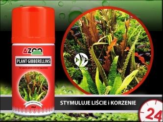 AZOO PLANT GIBBERELLINS 60ml - Hormony roślinne (gibberelliny) dla roślin w akwarium