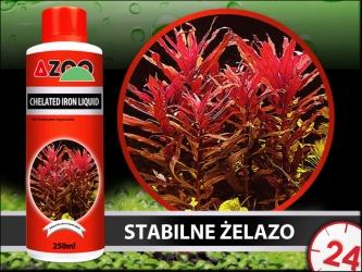 AZOO CHELATED IRON LIQUID (AZ11003) - Stabilny nawóz żelazowy, odpowiedni nawet dla twardej wody.