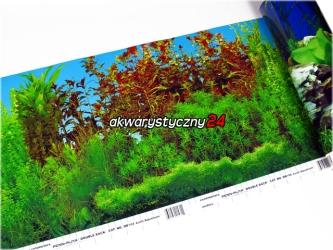 Foto tapeta do akwarium (wysokość 30cm) nr.104 - Tło dwustronne