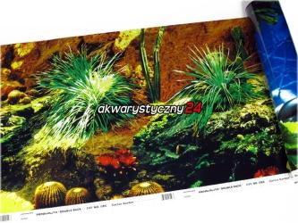 Foto tapeta do akwarium (wysokość 48cm) nr.6 - Tło dwustronne