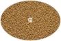 HIKARI Plankton Early (0,2mm) (40170) - Najmniejszy tonący pokarm dla narybku 50g