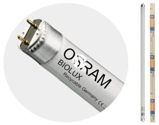 OSRAM Biolux T8 (L36/72-965) - Świetlówka dzienna 6500K poprawiająca samopoczucie zwierząt akwariowych