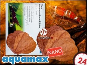 AQUAMAX Liście migdałecznika morskiego NANO  (aquamax Terminalia Catappa Leaves) (008)