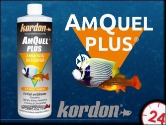 KORDON AMQUEL PLUS 236ml | Neutralizuje amoniak NH4/NH3, detoksyfikuje azotany NO3