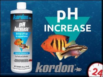 KORDON pH INCREASE 473ml | Preparat do podwyższania odczynu pH
