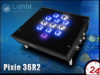 LUMINI PIXIE 36R2 (LUMP36R2) - Profesionalne oświetlenie do nano akwarium morskiego