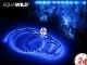 AQUAWILD Moon-Led Niebieski (AQMLEDN2) - Oświetlenie nocne do akwarium, najwyższa jakość. 2m