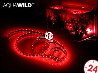 AQUAWILD Moon-Led Czerwony (AQMLEDCZ1) - Oświetlenie nocne do akwarium, najwyższa jakość.