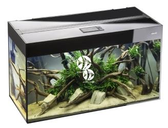 Aquael akwarium Glossy 150 czarny (113630) | Zestaw akwariowy z oświetleniem LED, 150x50x63cm