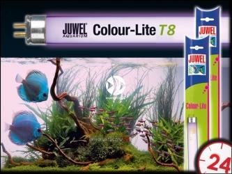 JUWEL COLOR-LITE T8 36cm(361mm), 14W - Świetlówka wybarwiająca ryby i rośliny