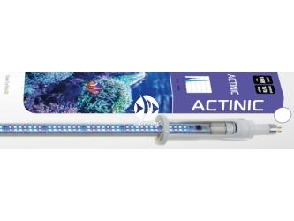 AQUAEL LEDDY TUBE RETROFIT ACTINIC 18W 1135-1265mm (114579) | Świetlówka Led do pokryw akwariowych 115-120cm, dobra dla koralowców