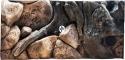 EKOL Tło Amazonka (AM50x30) - Tło do akwarium z motywami korzeni i skał, imitujące biotop Amazonii. 60x30 cm