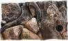 EKOL Tło Amazonka (AM50x30) - Tło do akwarium z motywami korzeni i skał, imitujące biotop Amazonii. 50x30 cm