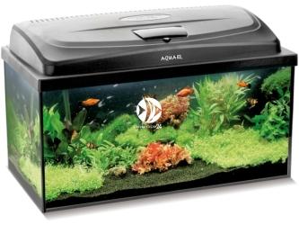 Aquael CLASSIC BOX SET 60 PROSTE (114809) | Zestaw akwariowy z oświetleniem LED, 60x30x30cm