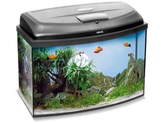 Aquael CLASSIC BOX SET 80 OVAL (114812) | Zestaw akwariowy z oświetleniem LED, 80x35x40cm