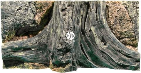 Back To Nature Amazonas (03000006) - Tło strukturalne z motywami drewna i skał do akwarium
