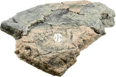 Back To Nature Rock module G (03000055) - Ozdoba imitująca kamień do akwarium lub terrarium