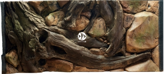 EKOL Uszkodzone Tło Amazonka 100x60 cm (AM100x60) - Tło do akwarium z motywami korzeni i skał, imitujące biotop Amazonii.