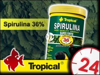 TROPICAL SUPER SPIRULINA FORTE 185g/1L - Roślinny pokarm płatkowy z wysoką zawartością spiruliny (36%)